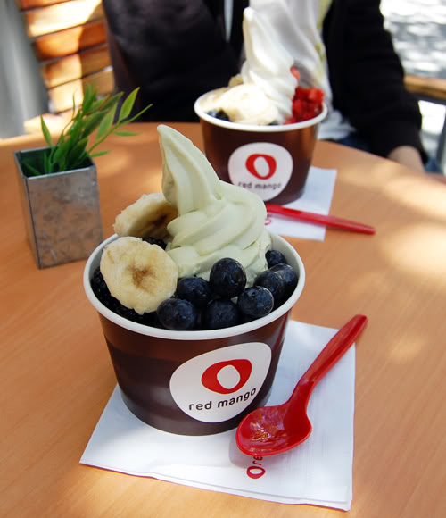 redmango Red Mango: Loco over FROYO