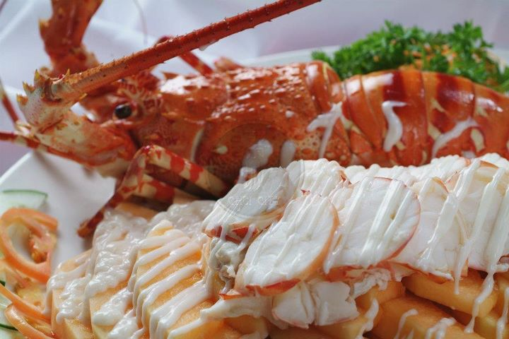 chilled lobster