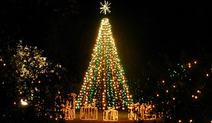 Majestic Christmas.The City S Majestic Christmas Trees For 2014 Everything Cebu