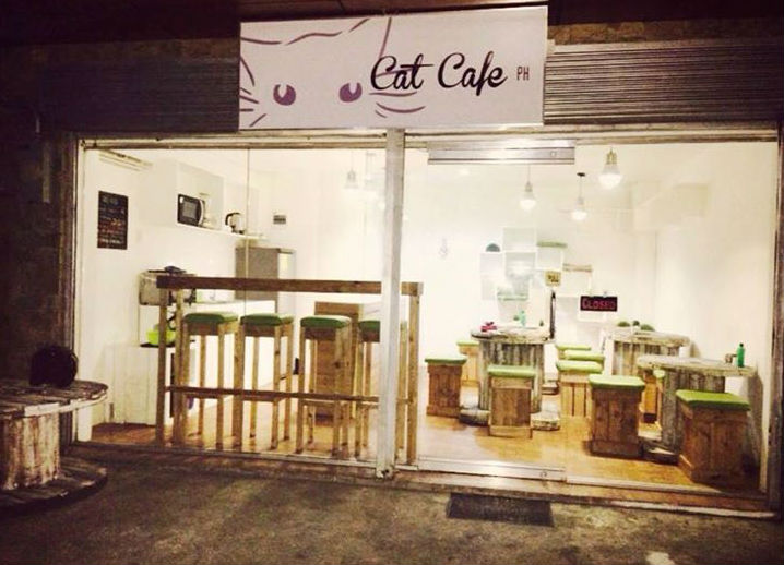 © Cat Cafe Facebook page